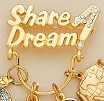 CHP015: Share A Dream Crystal & Gold Charm Holder Pin