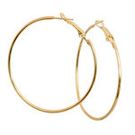 EA601PR: Silver or Gold Hoops