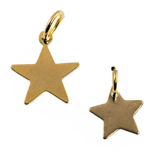 CH164: Solid GOLD or SILVER Star Charm
