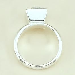 CH202: Ring Charm in Gold or Silver