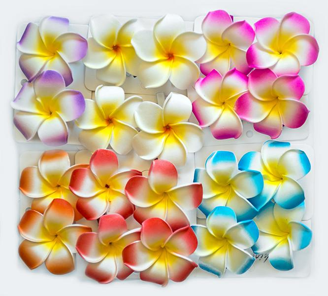 AB79: Hawaiian Flower Hair Ornament 6Pcs