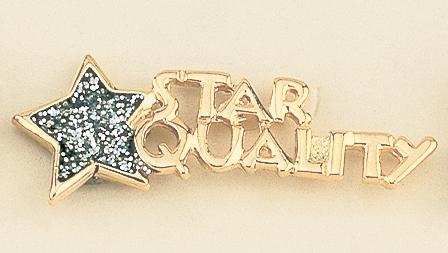 PA251: STAR QUALITY Gold Pin with Diamond Dust Star
