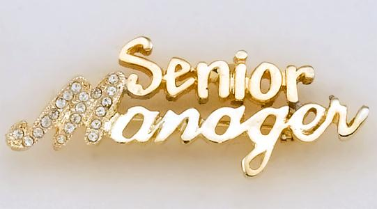 PA499: Senior Manager Pin