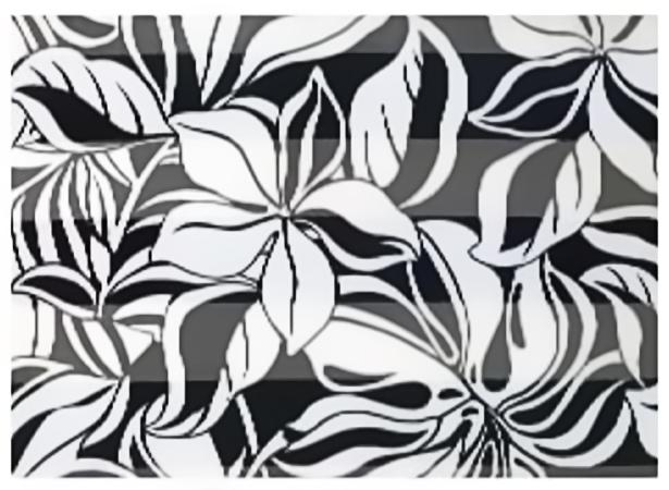 SS57: Floral Black & White Scarf